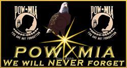 Image/POW-MIA Flag